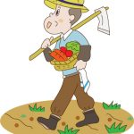 健康を考えるなら、無農薬、有機栽培(オーガニック)食品を食べ方がいい理由